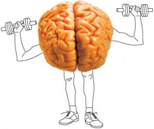 Cerebro Malhando